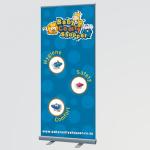 bcs-banner.png